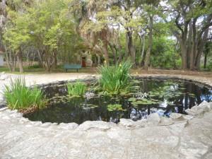 MP Pond