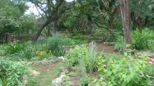 MP_Vol_Garden1